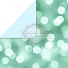 REVERSIBLE Vinyl Backdrop / Double sided / Baby Blue and Aqua Bokeh